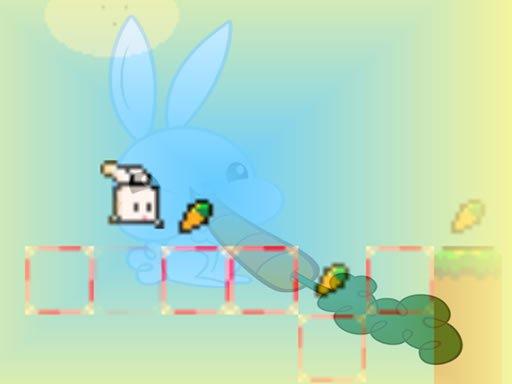 Bouncing Bunny